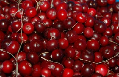 Tips on using Cranberries for Hair and Skin